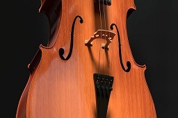 Close image of a cello